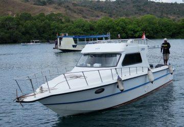 One Day Komodo Tour Speedboat